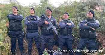 Polícia Militar apreende plantação de maconha em reserva de Sobradinho - Correio Braziliense