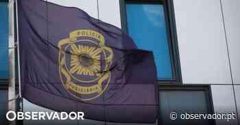 Detidos irmãos suspeitos de homicídio em Almada - Observador