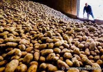 Dieet die coronakilo's nog niet weg, hier kan je jouw gewicht in aardappelen winnen