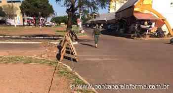 """Comércio na linha internacional está a """"todo vapor"""" em Ponta Pora/Pedro Juan - Ponta Porã Informa - Ponta Porã Informa"""