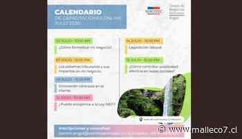 Atractiva parrilla de temas impartirá el Centro de Negocios Sercotec Angol - Malleco7