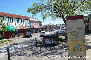 Scavenger hunt sends residents around Langley City to locate landmarks - Aldergrove Star
