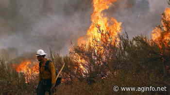 Wildfire Season Outlook Pt 2 - AG INFORMATION NETWORK OF THE WEST - AGInfo Ag Information Network Of The West
