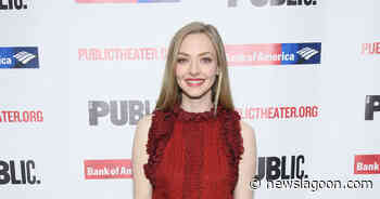 Amanda Seyfried Says 'You Should Have Left' Isn't Just a 'Psychological Thriller' - News Lagoon