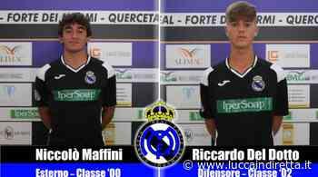 Real Forte Querceta, confermati anche i giovani Maffini e Del Dotto - Luccaindiretta - LuccaInDiretta