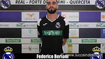 Real Forte Querceta, confermato anche il difensore Federico Bertoni - Luccaindiretta - LuccaInDiretta