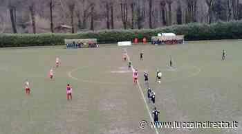 Due conferme e una new entry per il Real Forte Querceta - Luccaindiretta - LuccaInDiretta