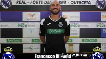 Real Forte Querceta, confermato l'attaccante 'Ciccio' Di Paola - Luccaindiretta - LuccaInDiretta