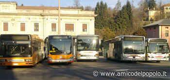 In provincia Riparte il trasporto pubblico urbano a Belluno, Feltre e Auronzo - L'Amico del Popolo