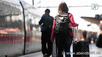 Hamburger Hauptbahnhof: Hartnäckige Diebin scheitert dreimal am selben Koffer