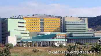 Università di Catanzaro, si riparte dai dipartimenti Confermati tre direttori su quattro - Gazzetta del Sud - Edizione Catanzaro, Crotone, Vibo