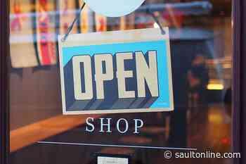 Nine students start businesses under Summer Company program