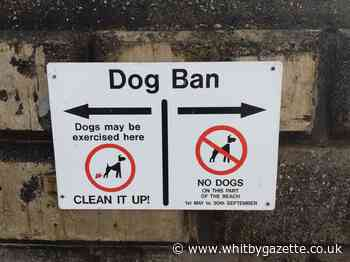 Scarborough Council to review its dog ban rules - Whitby Gazette