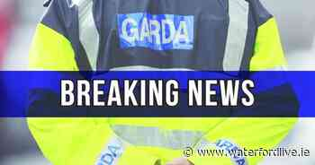 Gardaí arrest three people in relation to 2015 double murder - Waterford Live