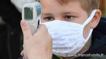 Coronavirus : la piste de l'immunité croisée écartée - Franceinfo