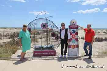 Marseillan - Les poissons Gloutons Hérault ont été installés à Marseillan ! - HERAULT direct