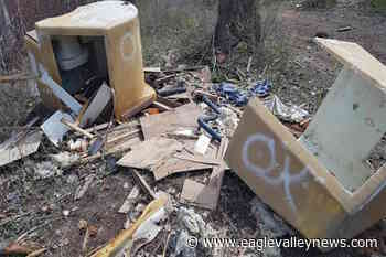 Hidden cameras in Okanagan forests catch illegal dumpers, lead to fines - Sicamous Eagle Valley News