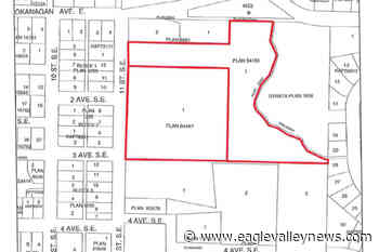 Neighbours raise concerns about proposed housing development in Salmon Arm - Sicamous Eagle Valley News