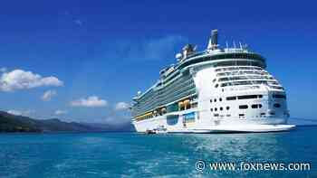 Health expert claims cruise ship could be safer travel than some major cities to avoid coronavirus - Fox News