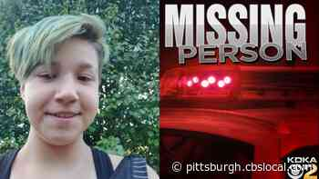 West Mifflin Police Looking For Missing Child Sam Price
