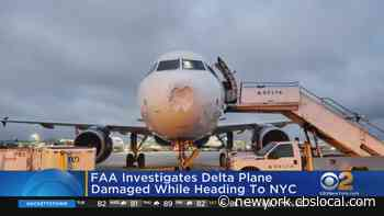 Possible Bird Strike Forces Delta Air Lines Jet To Land At JFK - CBS New York