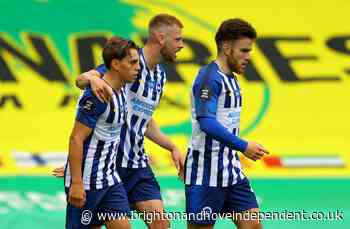 Why the stats experts reckon Brighton fully deserved their crucial win over Norwich City - Brighton & Hove Independent