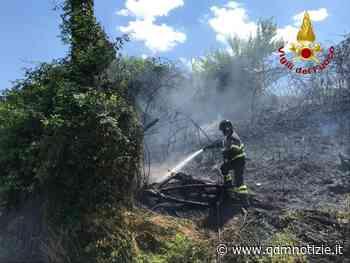 MONTE SAN VITO / A fuoco sterpaglie in una scarpata - QDM Notizie