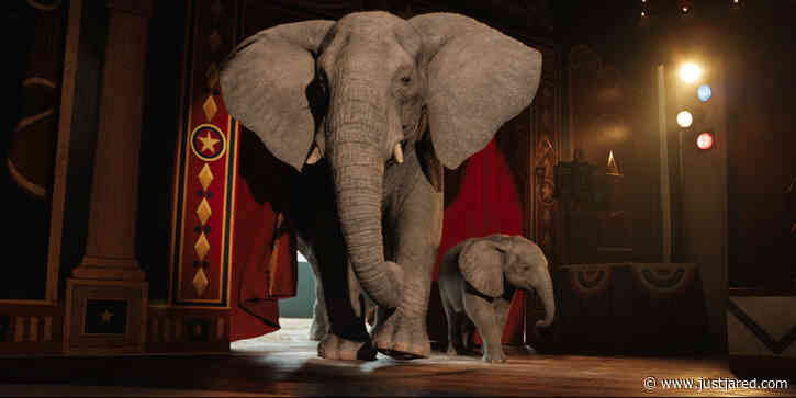 Angelina Jolie & Sam Rockwell Voice Disney's 'The One & Only Ivan' - Watch the Trailer! (Video)