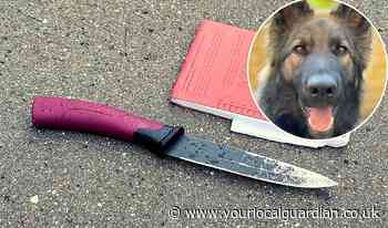 Police dog helps catch man with knife in Croydon chase