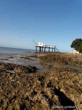 Découverte du milieu marin à Saint Palais sur Mer Centre de vacances Louis-Gaston Roussillat lundi 17 août 2020 - Unidivers