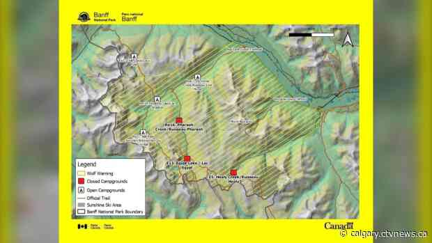 Wolf warning issued in Banff National Park, several campgrounds closed