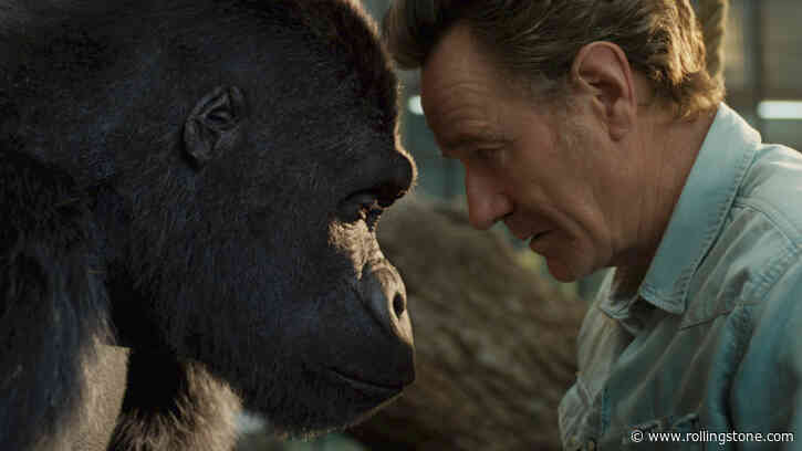 Watch Bryan Cranston Befriend a Gorilla in 'The One and Only Ivan' Trailer - Rolling Stone