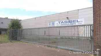 Nieuwe woonwijk in de maak op oude Tasibel-site in Hamme - TV Oost