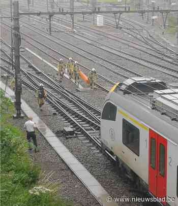Treinverkeer hervat na personenongeval in Zottegem