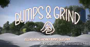 Bumps and Grind: Regenerating Hackney Bumps Skatepark