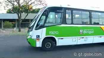 Transporte coletivo em Birigui é suspenso até o dia 15 de julho - G1