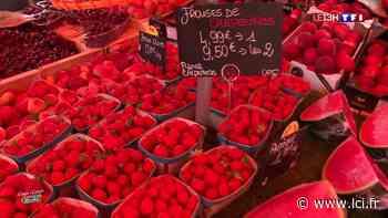"""""""Coups de cœur pour nos marchés"""" : retour à Sanary-sur-Mer, premier plus beau marché de France - LCI"""