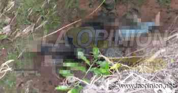 Identifican a la mujer hallada muerta; era de Misantla. - laopinion.net