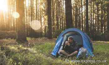 Camping holidays: Major blow for holidaymakers as New Forest campsites remain closed - Express
