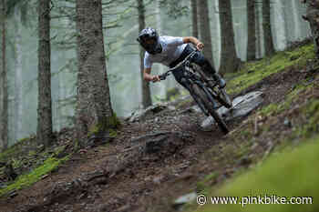 Video: Antoine Vidal Shreds Through a Misty Forest on the New Meta AM 29 - Pinkbike.com
