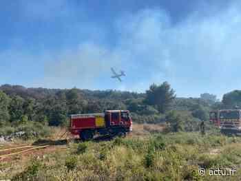 Montpellier-Castelnau-le-Lez : les Canadair engagés sur un feu de végétation - actu.fr