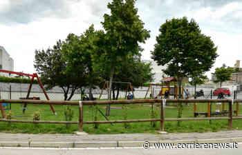 Monitoraggio delle aree verdi a Montegranaro e appalto triennale per la pulizia - CorriereNews