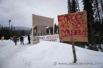B.C. orders Coastal GasLink to stop pipeline construction near protected wetlands - Castlegar News