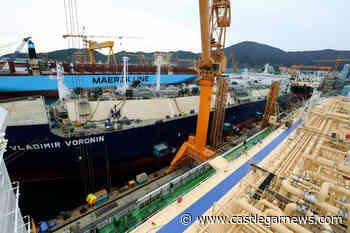 Global LNG terminal survey casts doubt on industry as 'safe bet' - Castlegar News