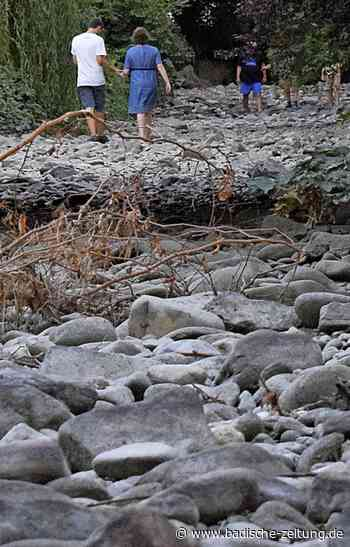 Antwort auf die Klimafrage? - Bad Krozingen - Badische Zeitung
