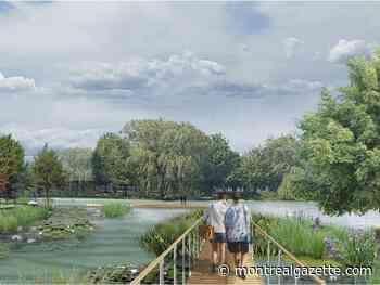Montreal to transform Lachine marina into $25-million waterfront park - Montreal Gazette