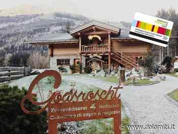 Capre, latte & latticini - Dolomiti.it
