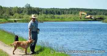Flooding woes just the start for Meadow Lake ranchers - Yorkton This Week