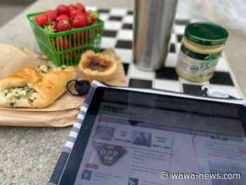 Morning News Tidbits – July 2 - Wawa-news.com