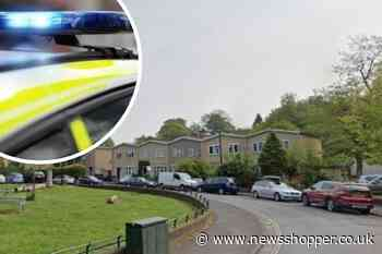 Murder investigation after man stabbed to death in Dulwich